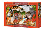 Castorland: Puzzle - Kittens play time - 1500 el.